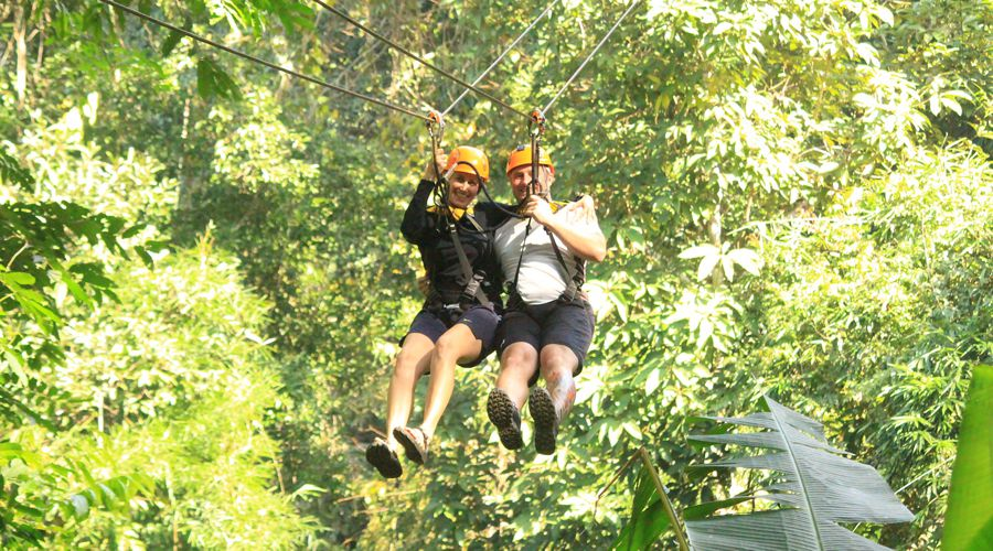 zip line Chiang Mai flight gibbon