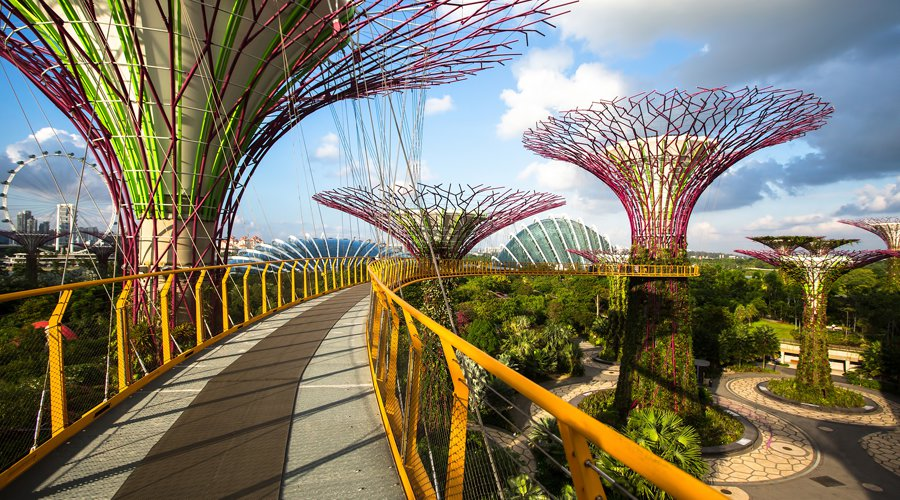 OCBC Skyway Gardens by the Bay SIngapore