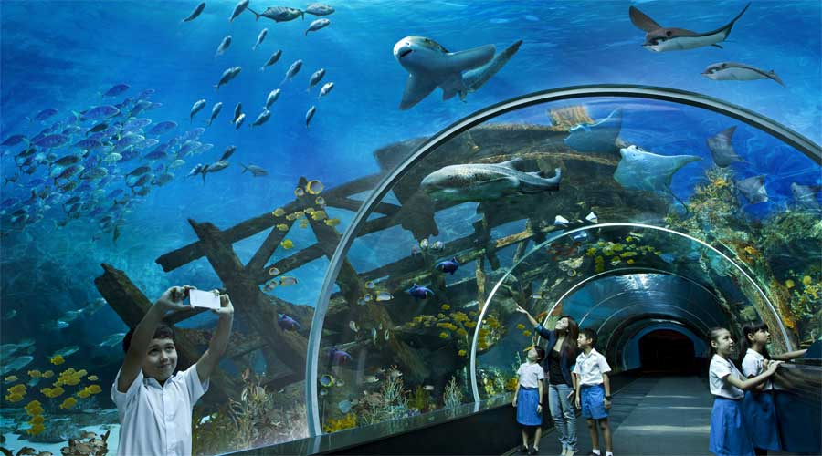 Sentosa Sea Aquarium