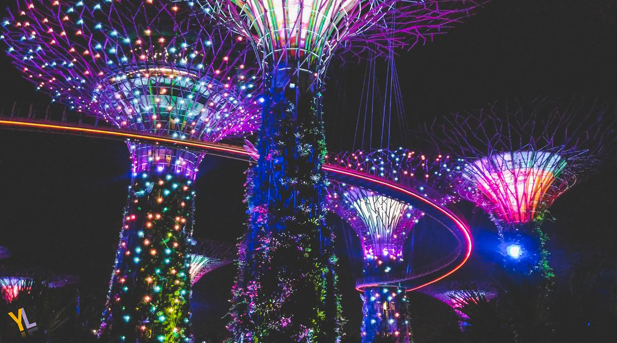 Ngày 1: Gardens by the Bay: Garden Rhapsody