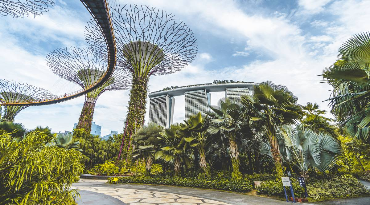 Ngày 1: Gardens by the Bay